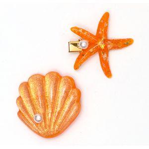 presilha-de-concha-e-estrela-do-mar-laranja