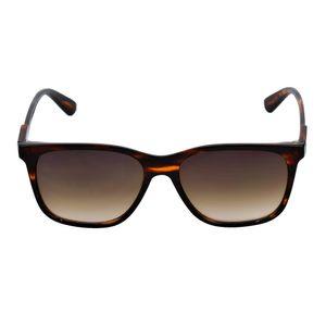 oculos-de-sol-Belize-marrom
